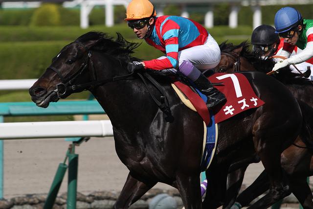 武豊騎手の天皇賞春全成績…スーパークリークやメジロマックイーンらで計6勝