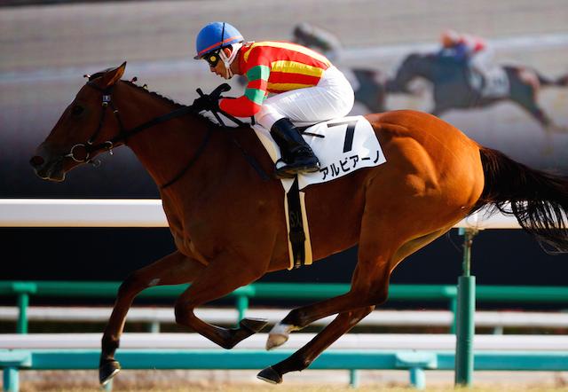 【京成杯AH2015】人気馬は?出走予定馬の勢力図と予想オッズを展望