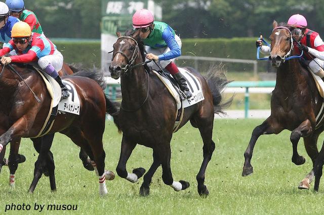 日本ダービーに届かなかった馬たち〜トーセンバジル、シュヴァルグランら〜/権利取れず編