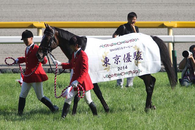 ワンアンドオンリー引退…ダービー馬、刹那の輝きと人々に与えた感動