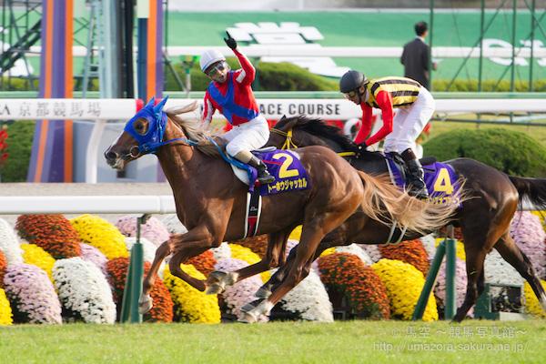 トーホウジャッカルが宝塚記念(2015年)で激走したら歴史的名馬になる可能性大?