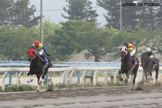 古豪が強い金沢競馬!ケージーキンカメが出走も…。世代交代が出来そうな馬は現れるのか?