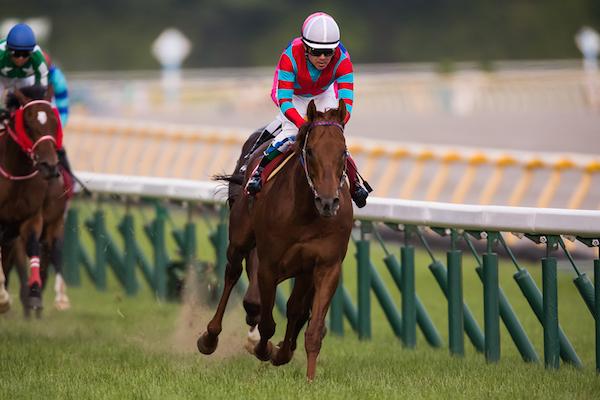 小倉大賞典2018の競馬予想データ分析…4つの注目点から浮上する激走馬とは?