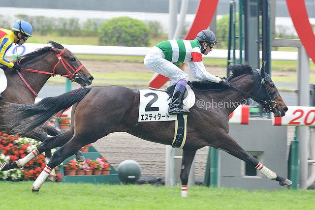 京都牝馬S2018の最新人気・予想オッズ、出走予定馬は?過去の歴代勝ち馬一覧