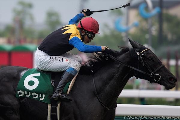 【セントウルステークス2015】人気馬は?出走予定馬の勢力図と予想オッズを展望