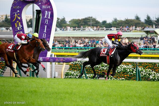 エイシンヒカリと武豊騎手が毎日王冠を制覇!ディープ産駒2頭目の快挙とは?