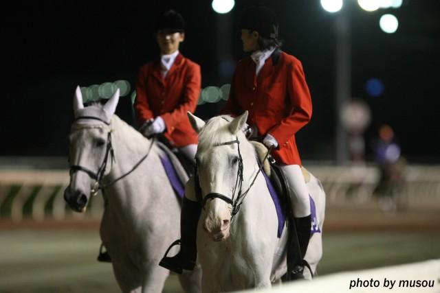 園田競馬場のアイドル誘導馬・マコーリーが長年の誘導馬生活を10月16日に退きます