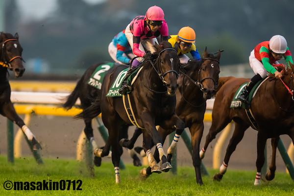 スマートオーディンと武豊騎手が躍動!東京スポーツ杯2歳S1着馬の血統や将来性は?