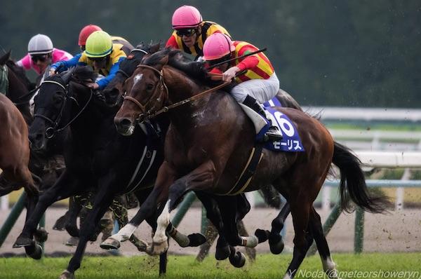 マイルCS2018の競馬予想分析!過去の血統と種牡馬、明確な共通点とは?