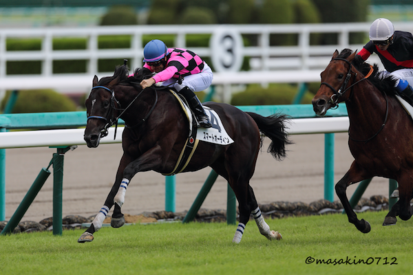 京都新聞杯2018の競馬予想分析…過去の血統と種牡馬の共通点は?