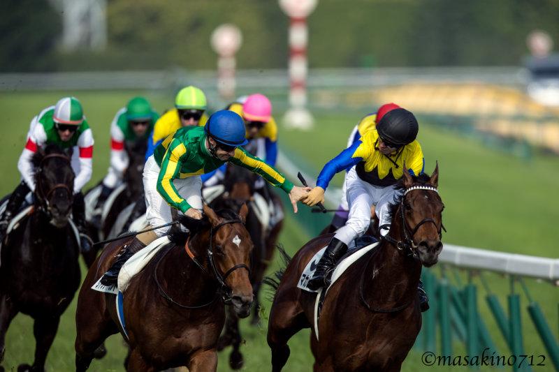 札幌記念2018の競馬予想分析!3つのデータから導く危険な人気馬