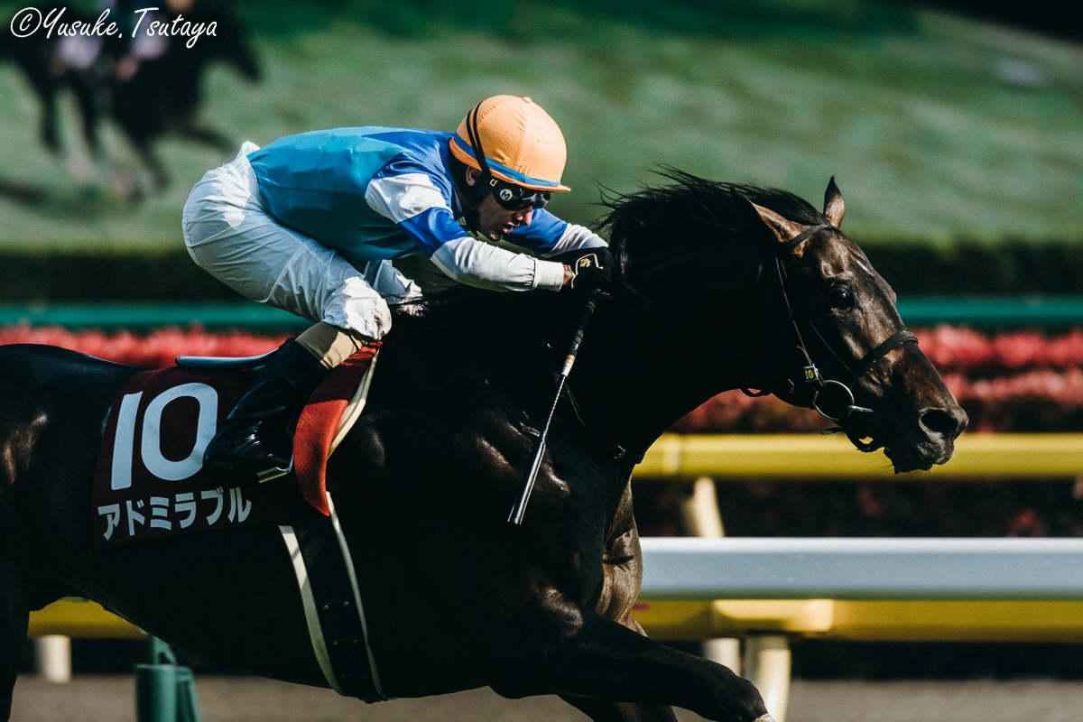 青葉賞2018の競馬予想分析…過去の血統と種牡馬、明確な共通点とは?