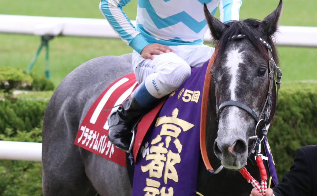 七夕賞2018の競馬予想分析…プラチナムバレットを頂へ導く3つのポイントとは?