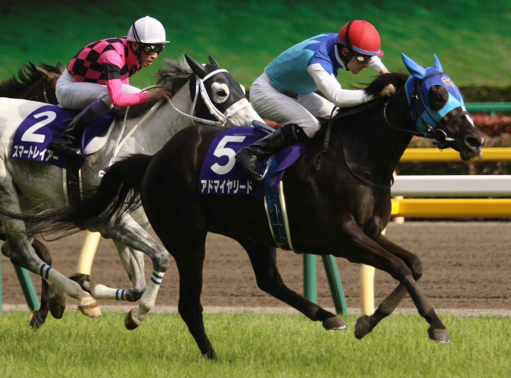 東京新聞杯2018の競馬予想分析…アドマイヤリードを頭で狙えない4つの理由