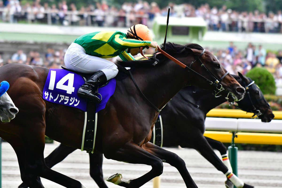 天皇賞秋2017の日程と予想オッズ・人気、出走予定馬の血統や過去の成績は?