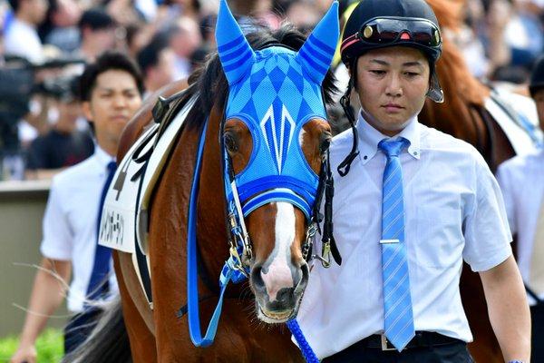 有馬記念2017の最終追い切り分析…レインボーラインらの調教評価は?