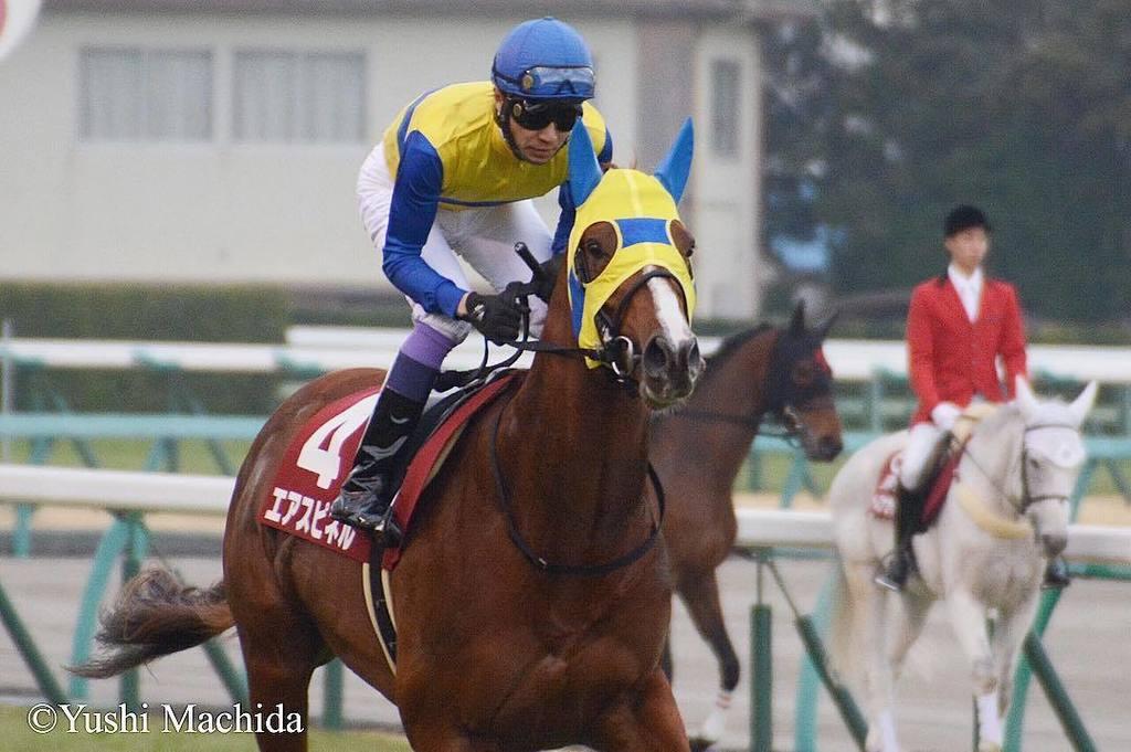 武豊騎手、今週の騎乗予定馬は?エアスピネルと安田記念制覇へ「ガッツポーズを」
