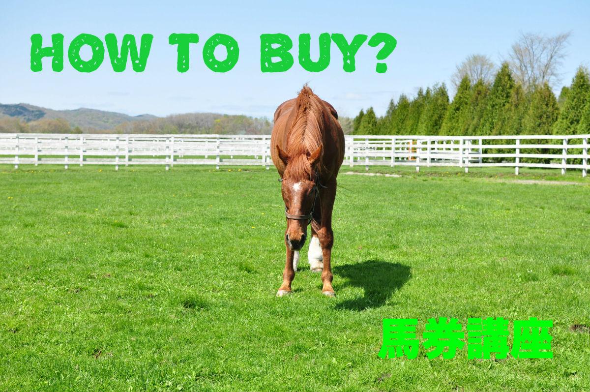 馬連とは?買い方やおすすめのボックスとフォーメーションを徹底解説