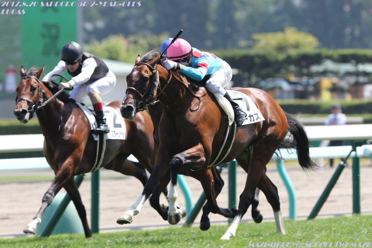 東京スポーツ杯2歳ステークス2017の予想オッズ・人気と日程、出走予定馬と過去の傾向は?