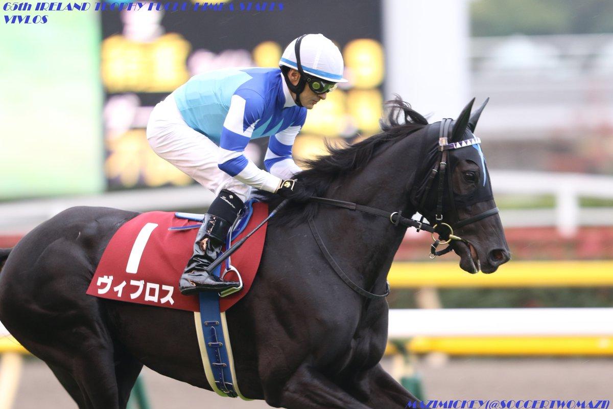 中山記念2018の予想オッズ・人気と出走予定馬は?ドバイや大阪杯に向けた戦いを展望