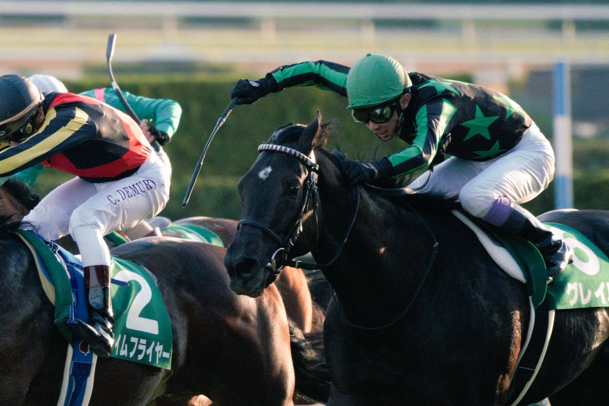 共同通信杯2018の競馬予想分析、結果発表!回収率190超のデータ該当馬とは?