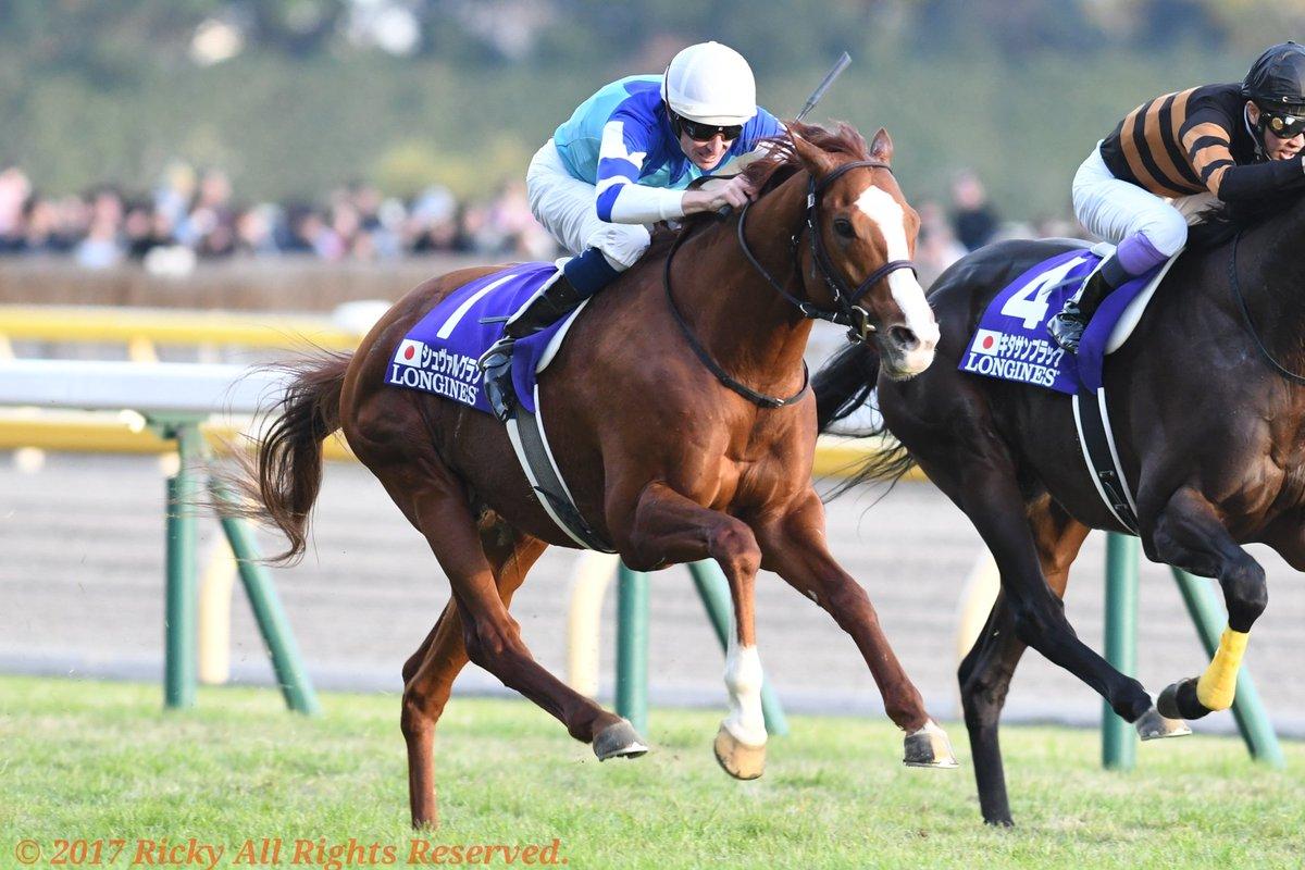 大阪杯2018の競馬予想分析…シュヴァルグランは激走する?4つの視点