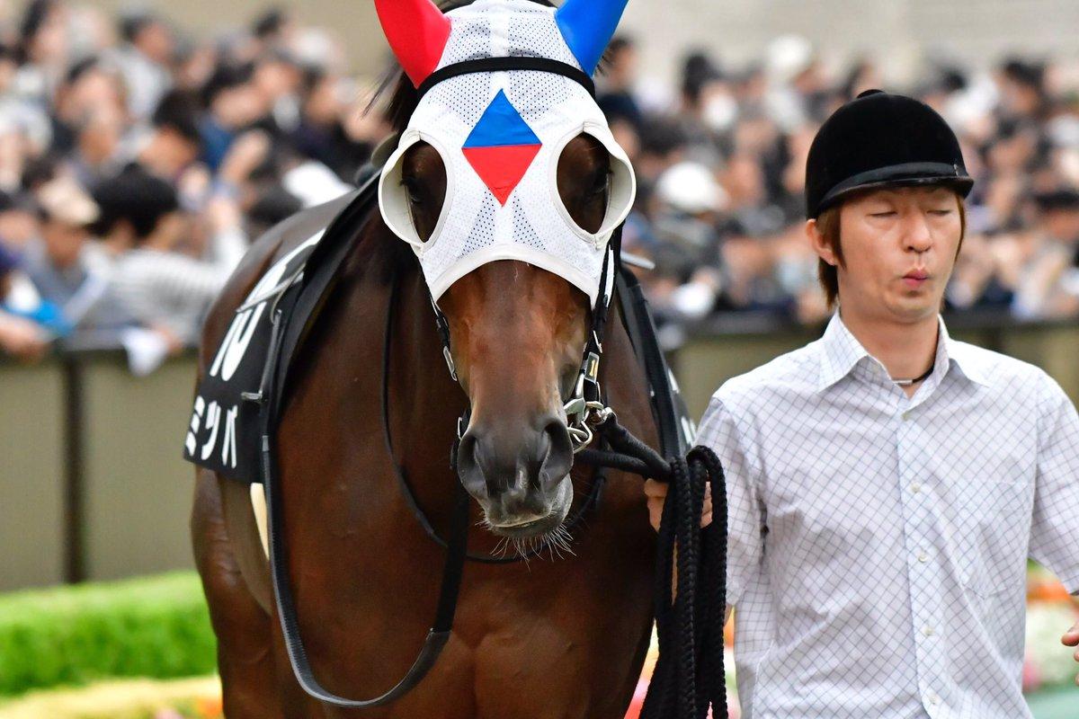アンタレスS2018の最新人気・予想オッズ、出走予定馬は?過去の歴代勝ち馬一覧