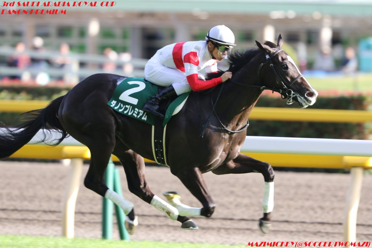 日本ダービー(東京優駿)2018の日程、出走予定馬と過去の傾向は?