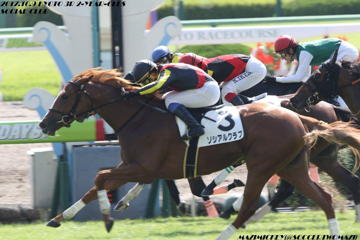 阪神ジュベナイルフィリーズ2017の競馬予想分析、結果発表!回収率180超のデータ該当馬は?