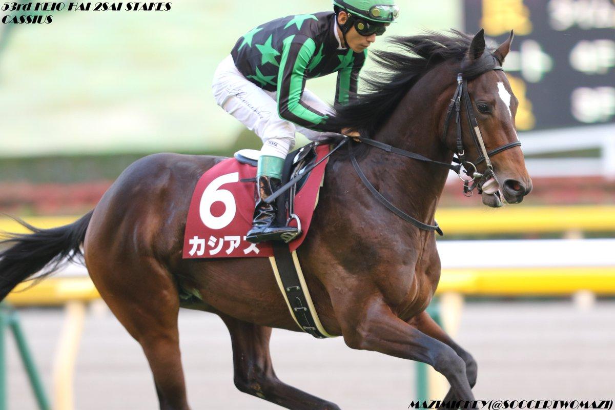 函館2歳S2019の競馬予想データ分析!過去10年の傾向は?