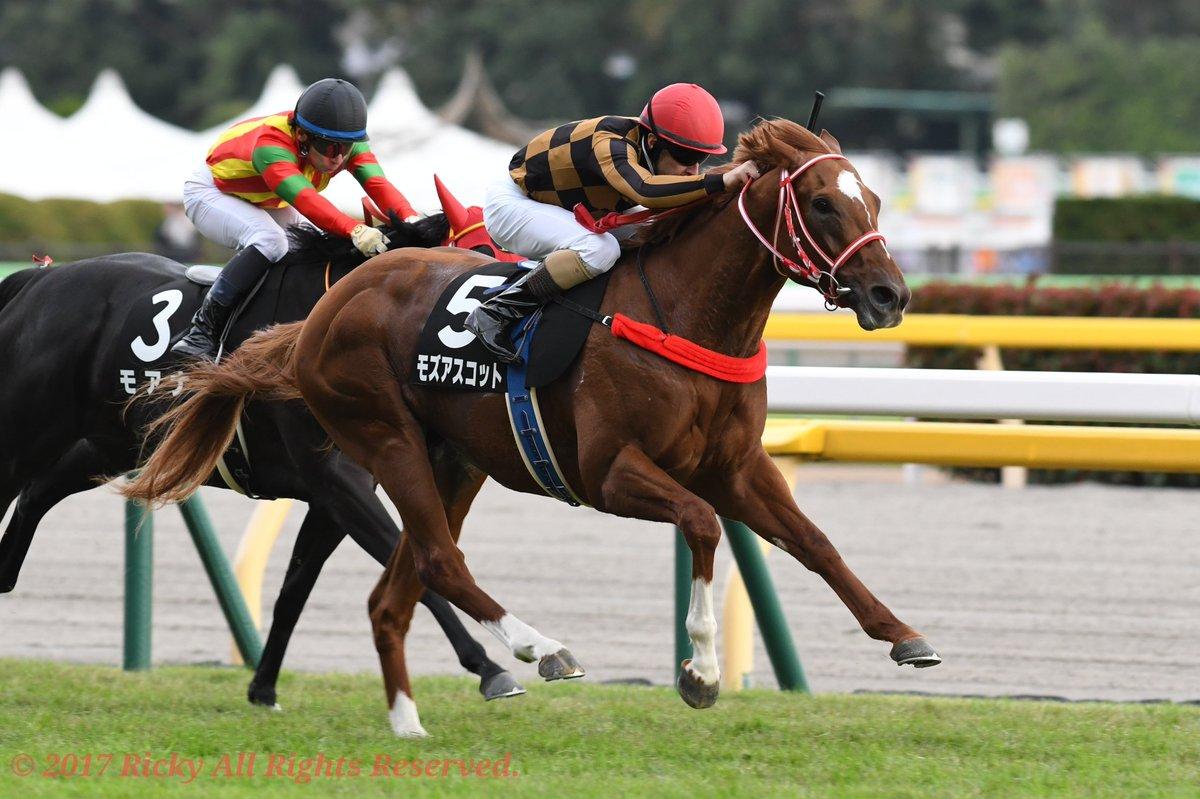 香港マイル2018の予想オッズ・人気と出走予定馬は?香港国際競走展望