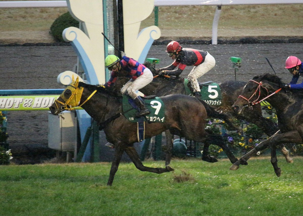 京都金杯2018の競馬予想分析…キョウヘイ、好走への3つの注目点とは?