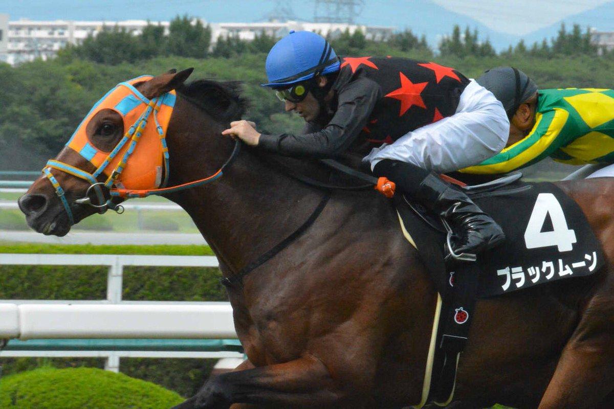 京都金杯2018の競馬予想データ分析…3つの注目点から浮上する激走馬とは?