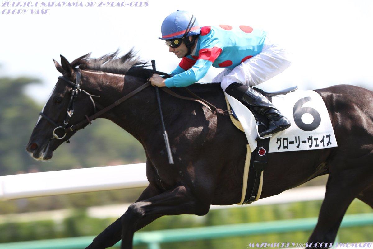 京都新聞杯2018の競馬予想分析、結果発表!回収率180超のデータ該当馬は?