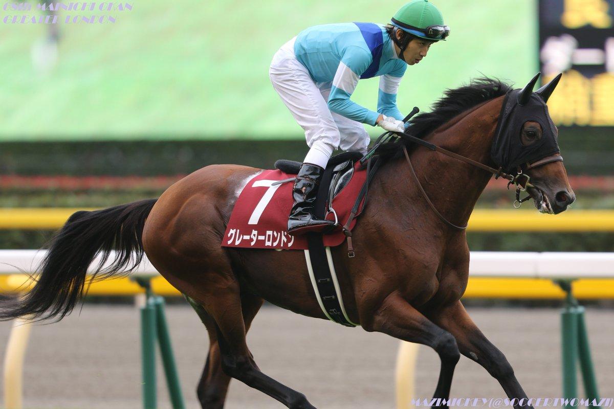 東京新聞杯2018の予想オッズ・人気と出走予定馬は?晩冬の伝統マイル重賞を展望