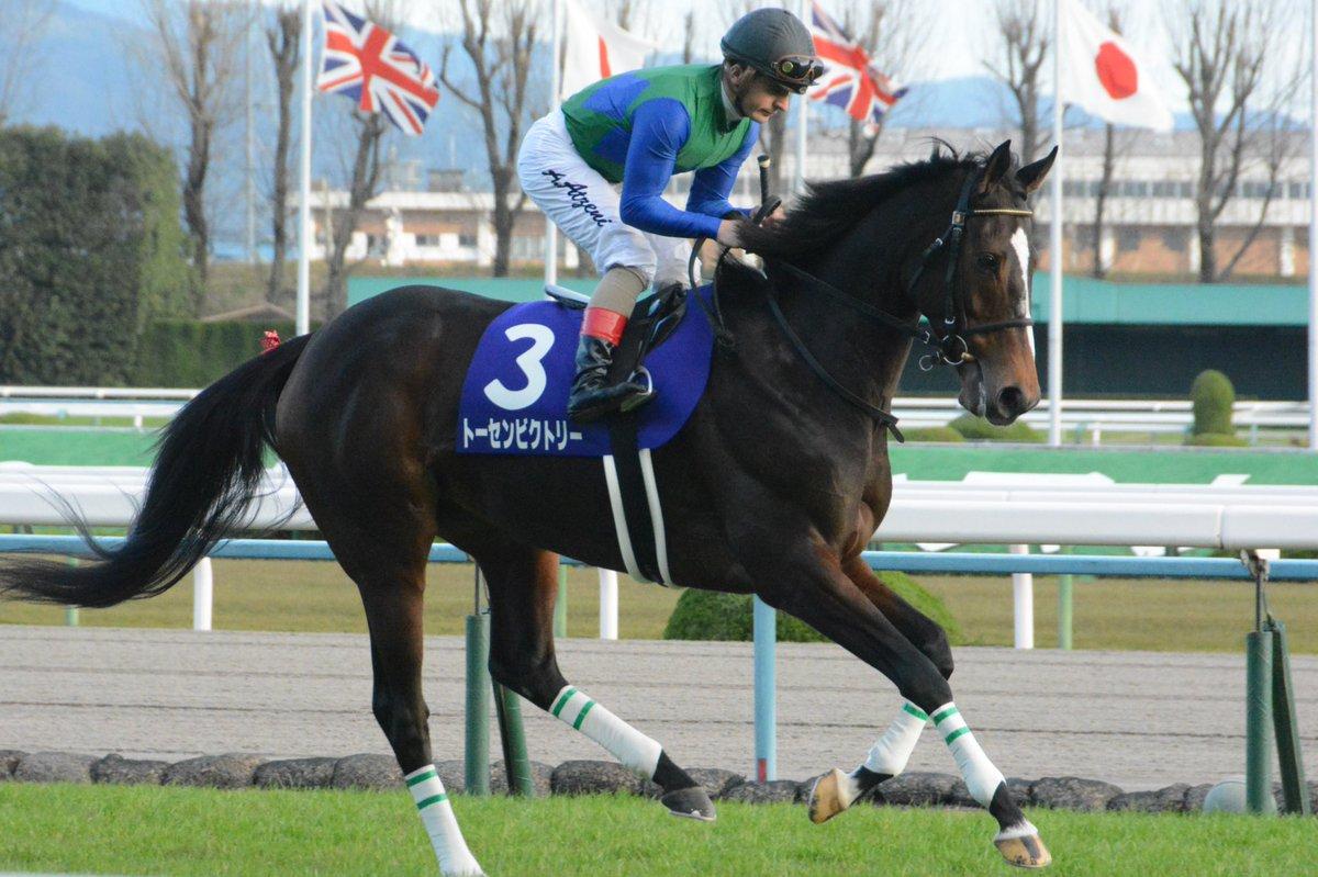 中山牝馬S2018の競馬予想分析、結果発表!回収率約380のデータ該当馬とは?