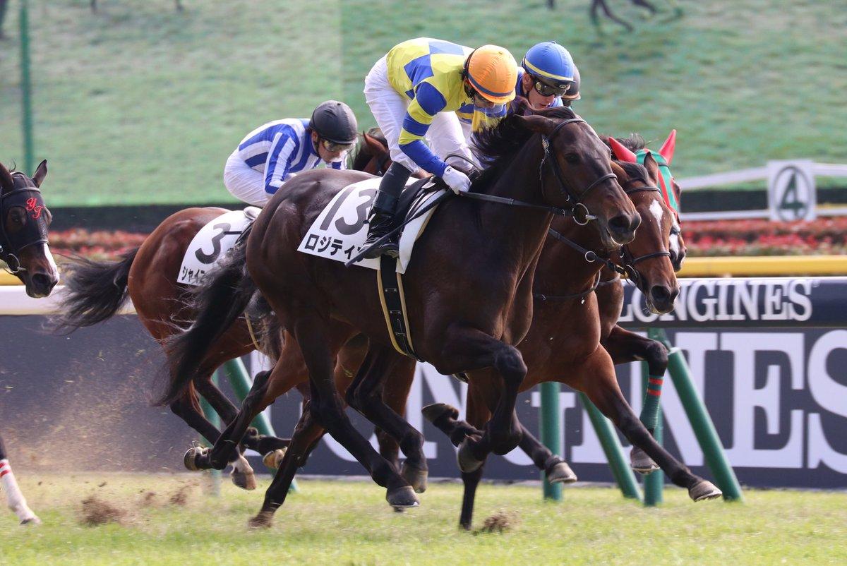 京成杯2018の競馬予想分析、結果発表!回収率190超のデータ該当馬とは?