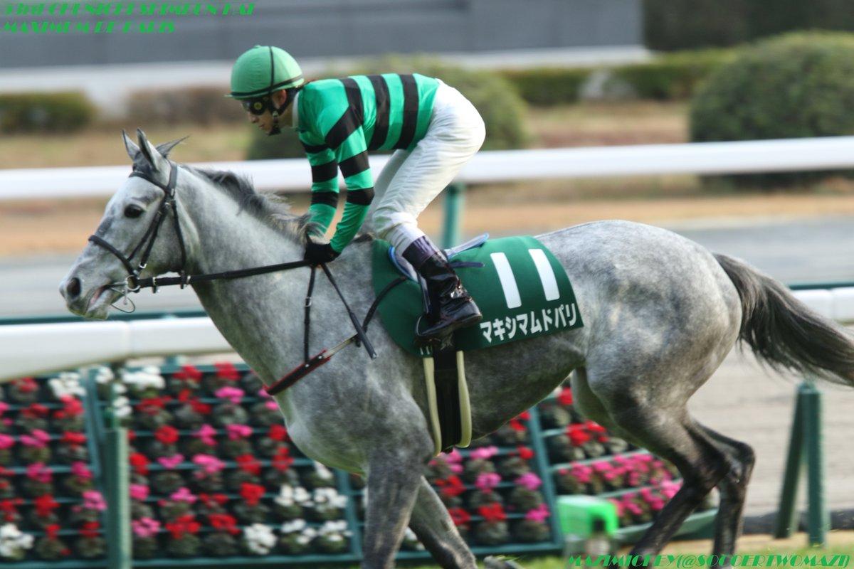 中山牝馬S2018の競馬予想分析…マキシマムドパリ有終の美への3つのポイント