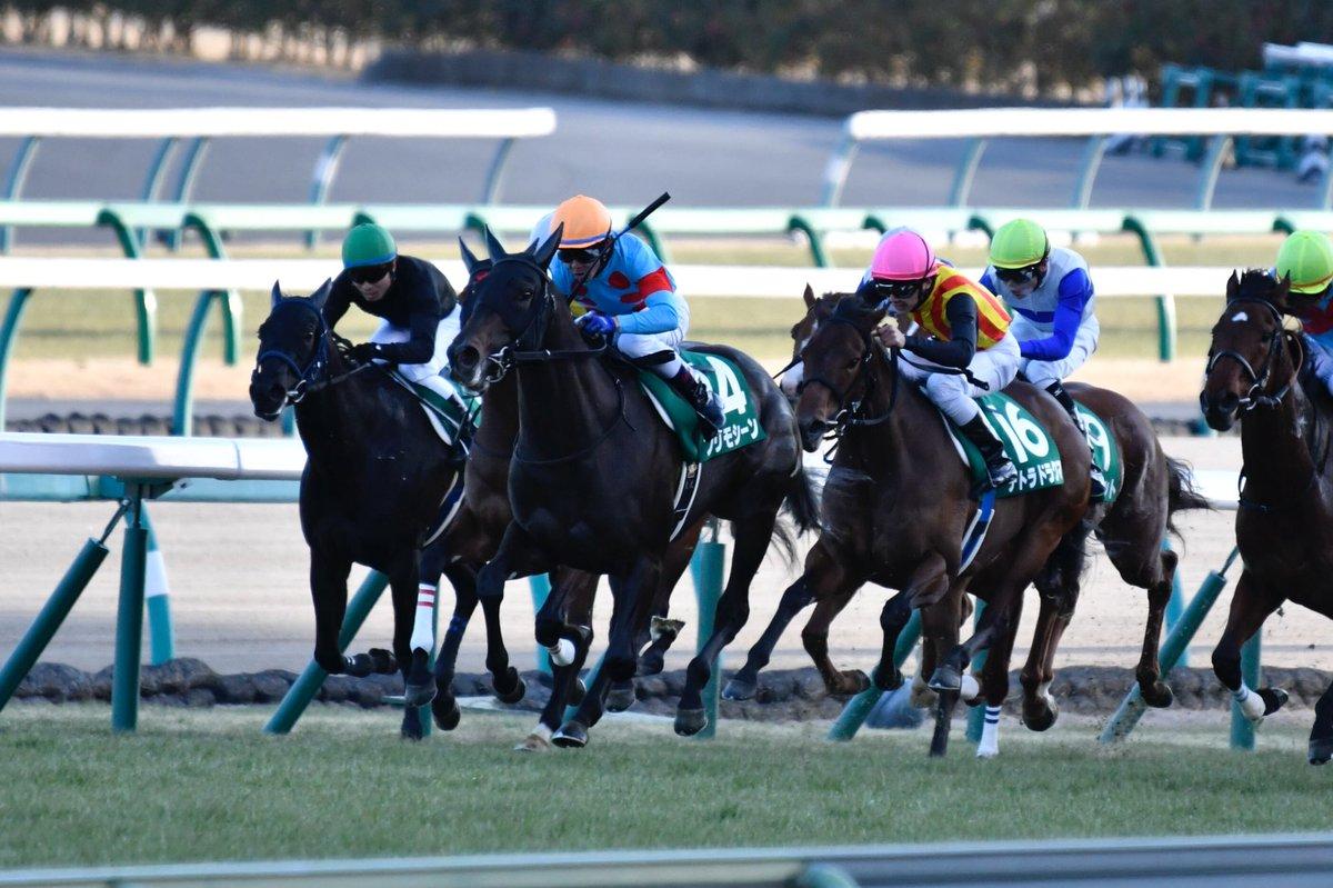 ターコイズS2018の競馬予想分析!3つのデータから導く危険な人気馬