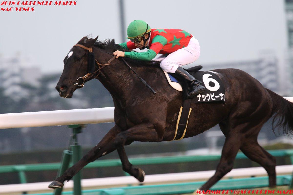 函館スプリントステークス2018の予想オッズ・人気と日程、出走予定馬は?