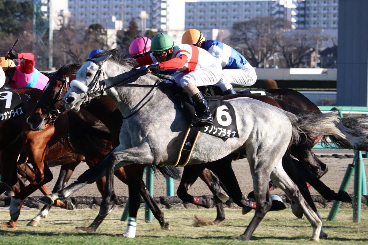 東京新聞杯2018の競馬予想分析…ダノンプラチナの激走を巡る3つの論点とは?