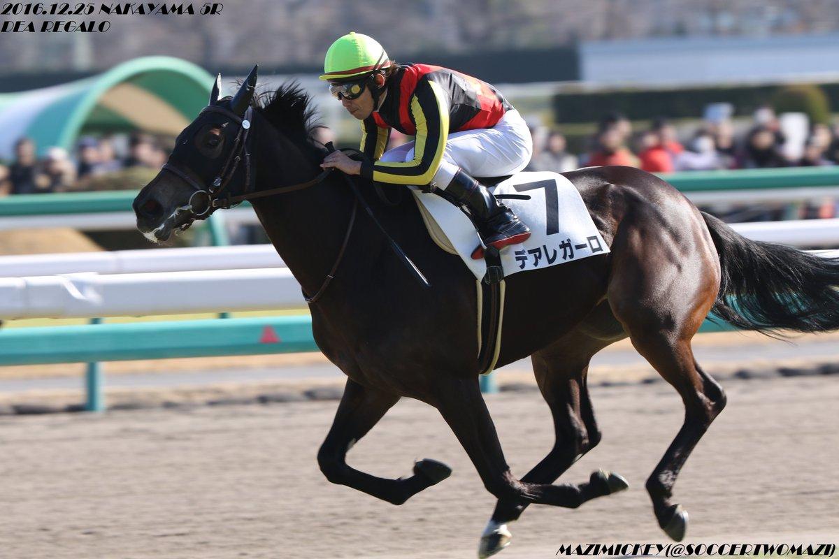 函館スプリントS2019の競馬予想分析!5つのデータから導く勝ち馬候補