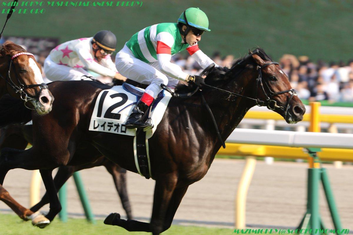 オールカマー2018の予想オッズ・人気と出走予定馬は?伝統の古馬重賞展望