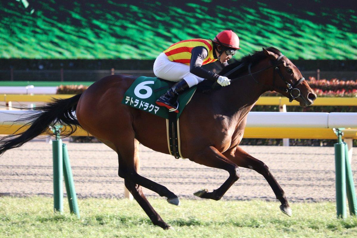 NHKマイルカップ2018の競馬予想分析…牝馬再び?テトラドラクマの強調材料