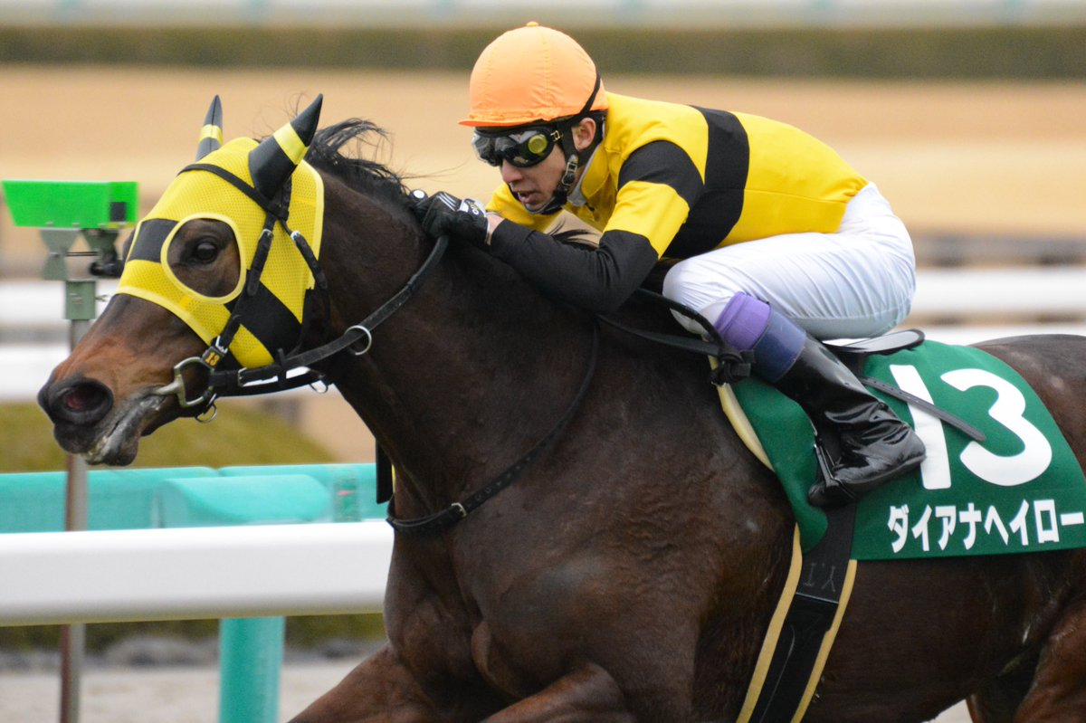 北九州記念2018の競馬予想分析!過去の血統と種牡馬の共通点とは?