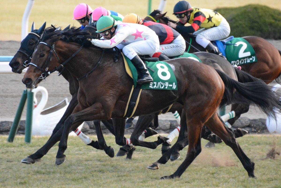 ターコイズS2018の競馬予想分析!過去の血統と種牡馬の共通点とは?
