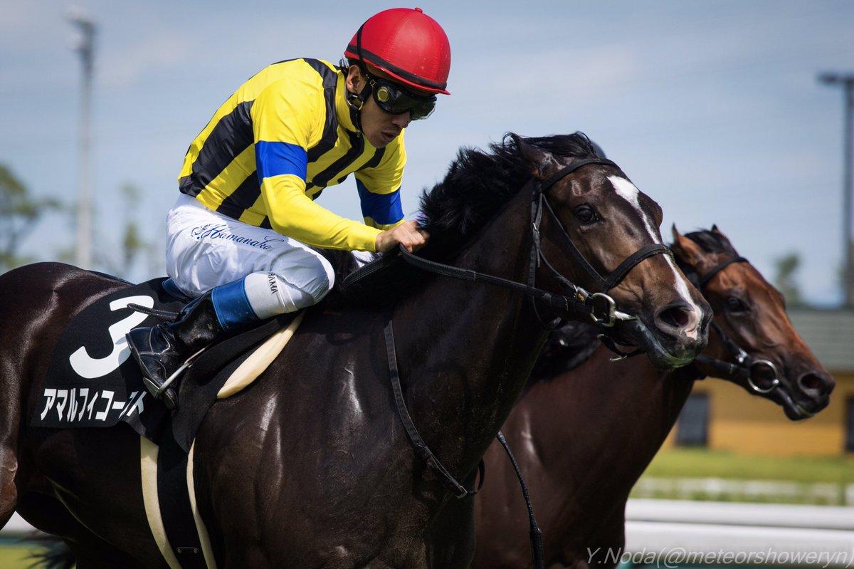 フィリーズレビュー2018の予想オッズ・人気と日程、出走予定馬と過去の傾向は?