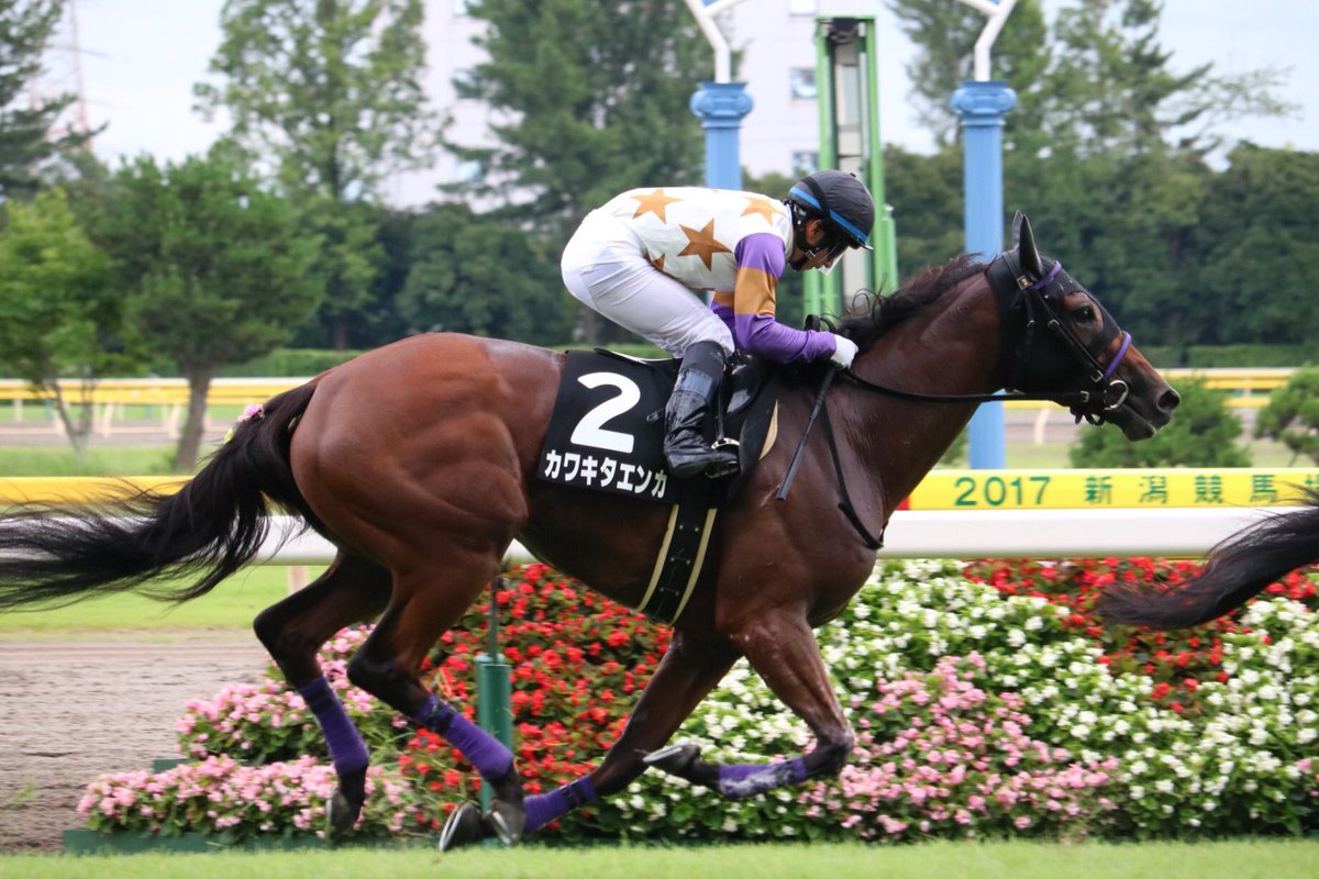 福島牝馬S2018の予想オッズ・人気と日程、出走予定馬と過去の傾向は?