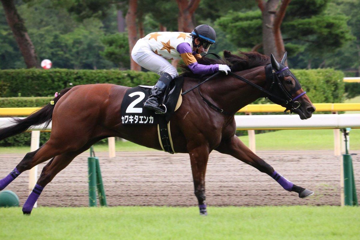 中山牝馬S2018の競馬予想分析…カワキタエンカの飛躍を示唆する三要素とは?