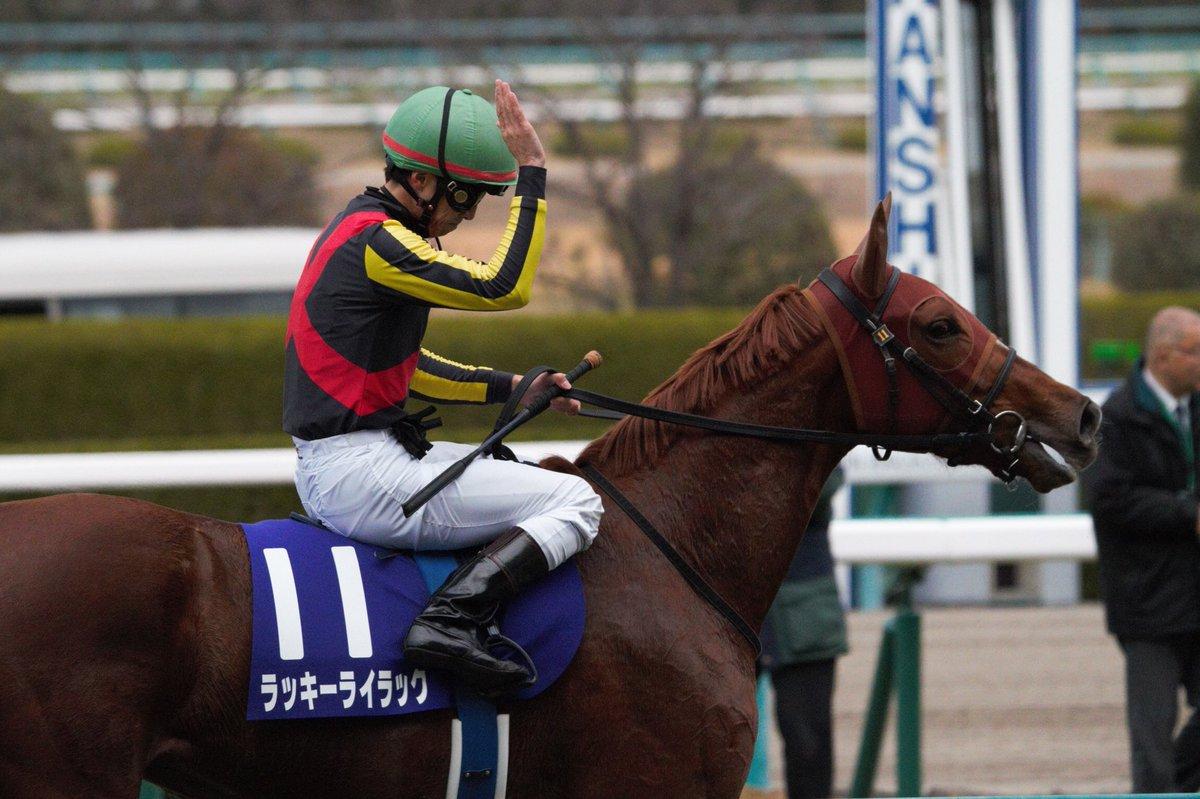 桜花賞2018の予想オッズ・人気と日程、出走予定馬と過去の傾向は?